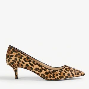 Coming Soon Ann Taylor Reese Leopard Low Heel 9.5